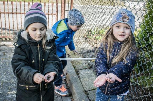 zajęcia przyrodnicze-poszukiwanie muszelek ślimaków